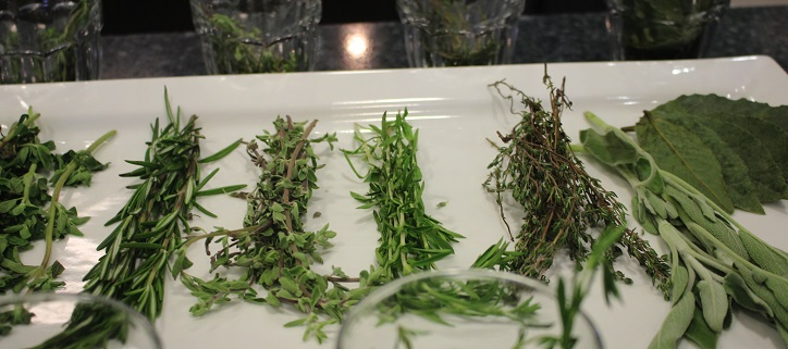 Learn About Herbs with The Chopping Block
