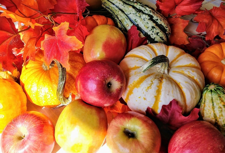apples gourds
