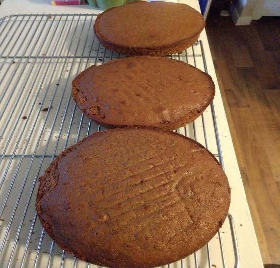 chocolatecooledcakes