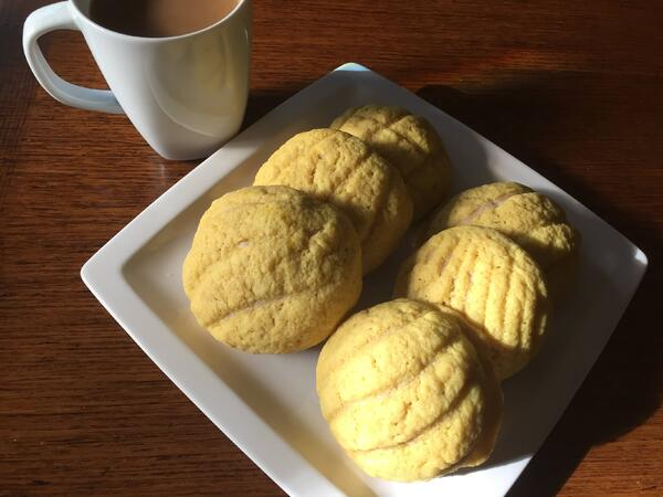 conchas plated