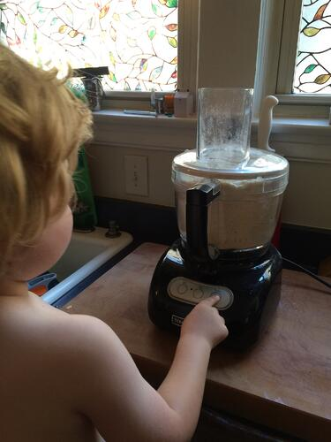 food processor teddy