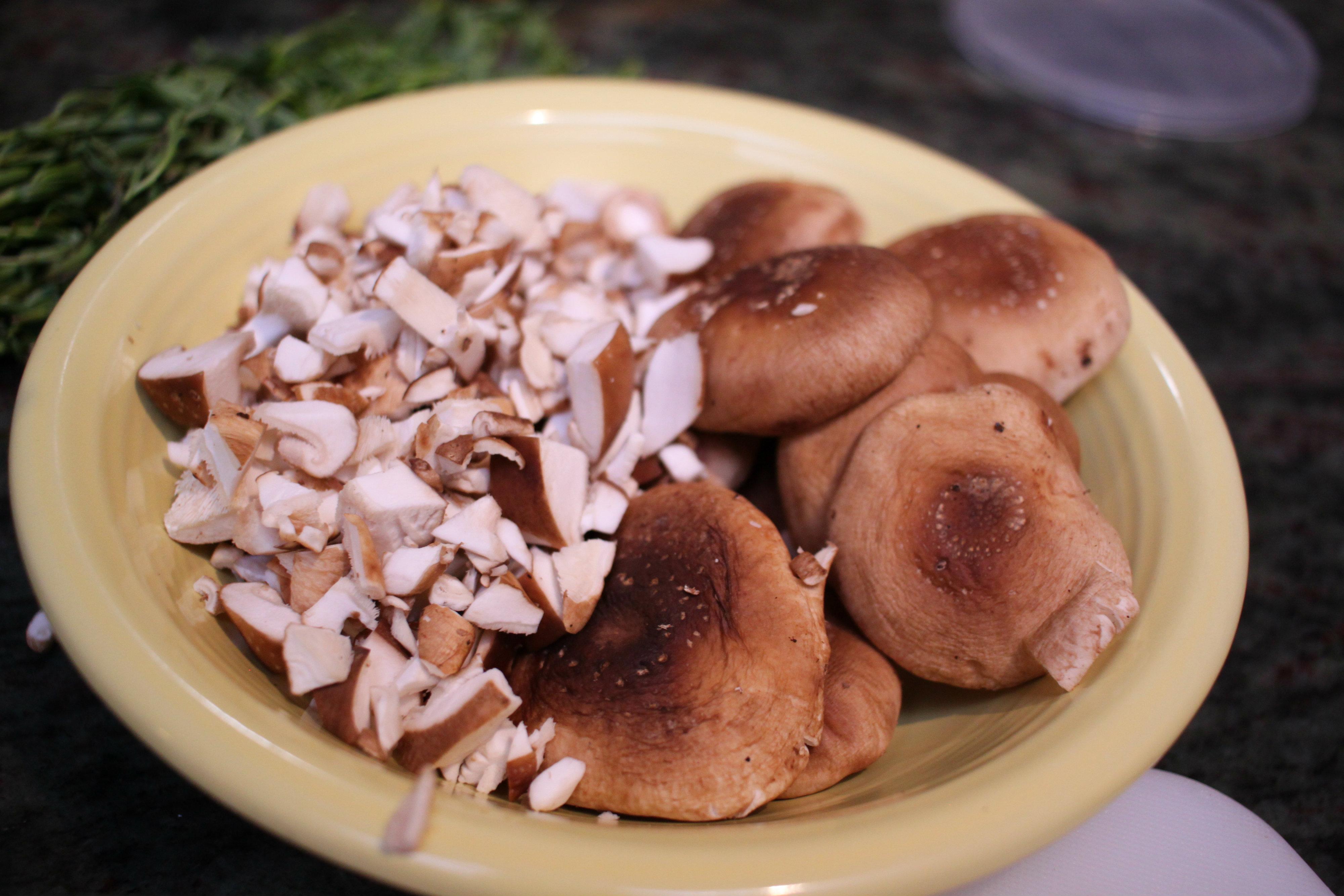 mushrooms-5