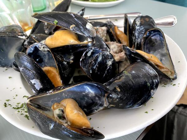 mussels-4