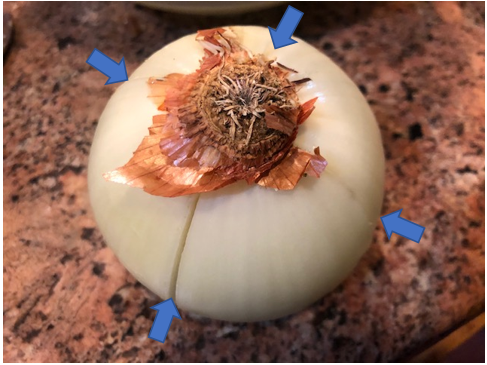 onions with arrows