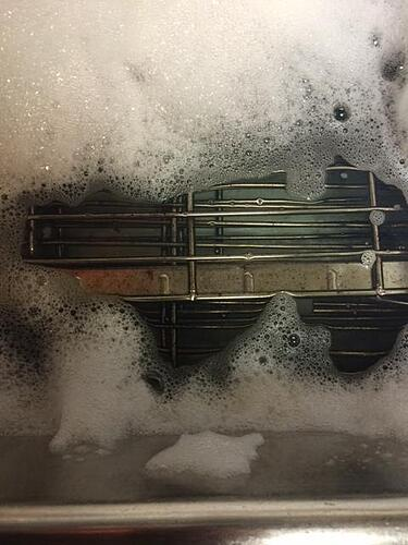 oven grates soaking