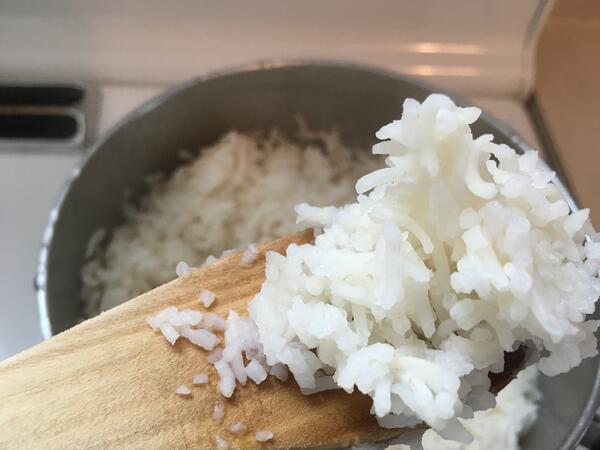 rice on paddle