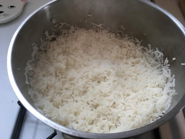 rice experiment