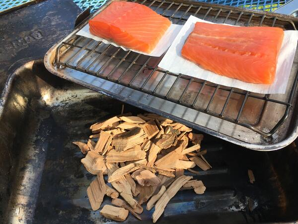 salmon set up