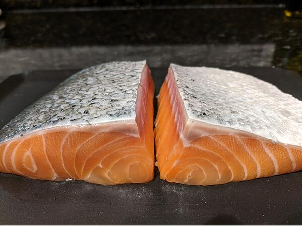salmon side view