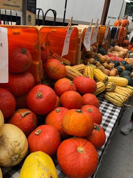 squash market