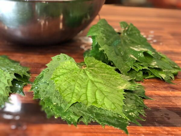 stacked grape leaves