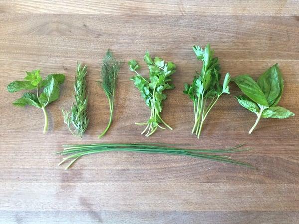 tender herbs