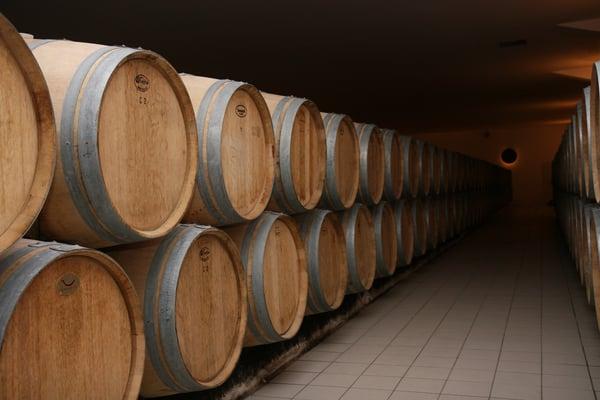 wood-vineyard-wine-france-europe-red-958741-pxhere.com